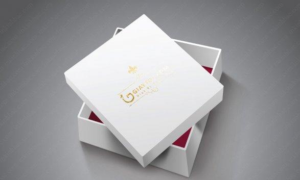 Mẫu in hộp giấy đựng giầy