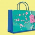 Nhận in túi giấy đựng quà Tết đẹp theo yêu cầu khách hàng